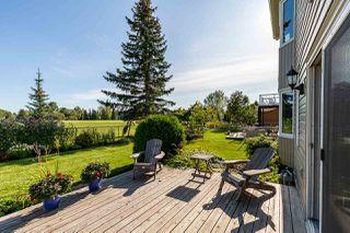 Photo 20: 10553 16 Avenue NW in Edmonton: Zone 16 House for sale : MLS®# E4173425