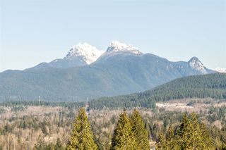 Photo 24: 25588 GODWIN Drive in Maple Ridge: Whonnock House for sale : MLS®# R2462819
