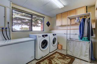 Photo 26: 132 MACEWAN Drive NW in Calgary: MacEwan Glen Detached for sale : MLS®# A1013092