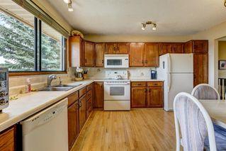 Photo 9: 132 MACEWAN Drive NW in Calgary: MacEwan Glen Detached for sale : MLS®# A1013092