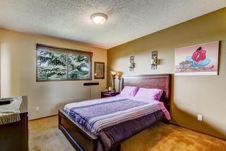 Photo 13: 132 MACEWAN Drive NW in Calgary: MacEwan Glen Detached for sale : MLS®# A1013092