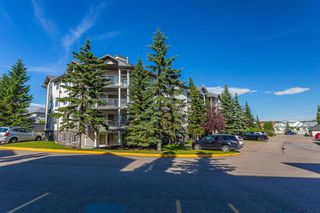 Photo 21: 407 55 ARBOUR GROVE Close NW in Calgary: Arbour Lake Apartment for sale : MLS®# A1015992