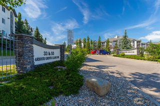 Photo 20: 407 55 ARBOUR GROVE Close NW in Calgary: Arbour Lake Apartment for sale : MLS®# A1015992