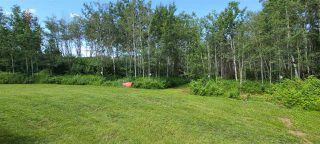 Photo 4: 60412 Range Road 111: Rural St. Paul County House for sale : MLS®# E4207572