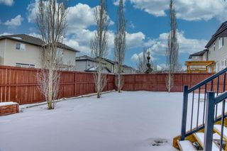 Photo 3: 117 Prairie Springs Crescent SW: Airdrie Detached for sale : MLS®# A1048711