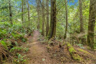 Photo 35: 4660 Otter Point Pl in : Sk Otter Point House for sale (Sooke)  : MLS®# 850236