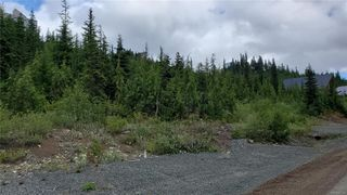 Main Photo: 930 Cruikshank Ridge in : CV Mt Washington Land for sale (Comox Valley)  : MLS®# 857126