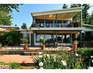 Photo 1: 13243 55A Avenue in Surrey: Panorama Ridge House for sale : MLS®# F1003580