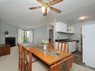 Photo 9: 303 1655 Begbie St in VICTORIA: Vi Fernwood Condo for sale (Victoria)  : MLS®# 839169
