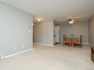 Photo 6: 303 1655 Begbie St in VICTORIA: Vi Fernwood Condo for sale (Victoria)  : MLS®# 839169