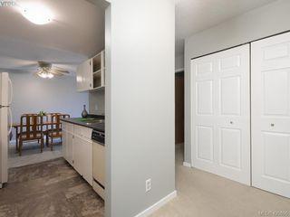 Photo 12: 303 1655 Begbie St in VICTORIA: Vi Fernwood Condo for sale (Victoria)  : MLS®# 839169