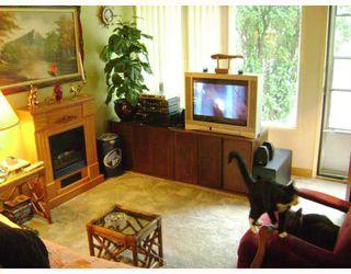 Photo 5:  in WINNIPEG: West Kildonan / Garden City Residential for sale (North West Winnipeg)  : MLS®# 2915867