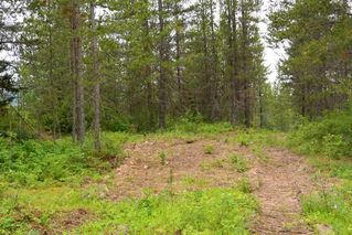 Photo 31: DL 1335A 37 Highway: Kitwanga Land for sale (Smithers And Area (Zone 54))  : MLS®# R2471833