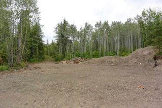 Photo 6: DL 1335A 37 Highway: Kitwanga Land for sale (Smithers And Area (Zone 54))  : MLS®# R2471833