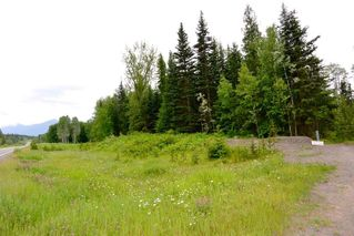 Photo 3: DL 1335A 37 Highway: Kitwanga Land for sale (Smithers And Area (Zone 54))  : MLS®# R2471833