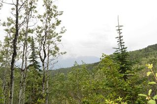 Photo 9: DL 1335A 37 Highway: Kitwanga Land for sale (Smithers And Area (Zone 54))  : MLS®# R2471833