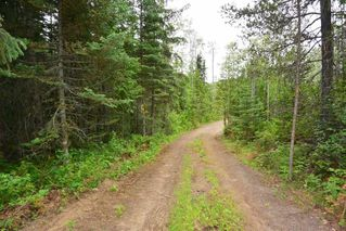Photo 5: DL 1335A 37 Highway: Kitwanga Land for sale (Smithers And Area (Zone 54))  : MLS®# R2471833