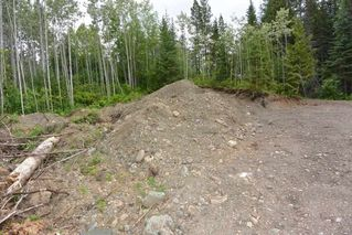 Photo 15: DL 1335A 37 Highway: Kitwanga Land for sale (Smithers And Area (Zone 54))  : MLS®# R2471833