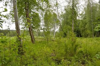 Photo 18: DL 1335A 37 Highway: Kitwanga Land for sale (Smithers And Area (Zone 54))  : MLS®# R2471833