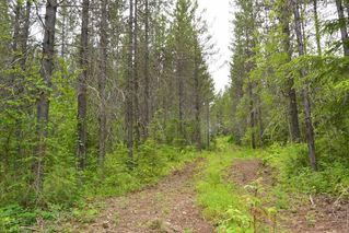 Photo 26: DL 1335A 37 Highway: Kitwanga Land for sale (Smithers And Area (Zone 54))  : MLS®# R2471833