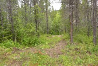 Photo 28: DL 1335A 37 Highway: Kitwanga Land for sale (Smithers And Area (Zone 54))  : MLS®# R2471833