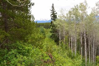 Photo 29: DL 1335A 37 Highway: Kitwanga Land for sale (Smithers And Area (Zone 54))  : MLS®# R2471833