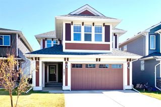 Photo 1: 287 AUBURN GLEN Drive SE in Calgary: Auburn Bay Detached for sale : MLS®# A1032601