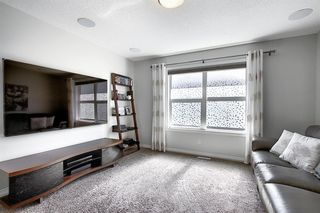 Photo 24: 287 AUBURN GLEN Drive SE in Calgary: Auburn Bay Detached for sale : MLS®# A1032601