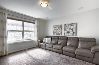 Photo 25: 287 AUBURN GLEN Drive SE in Calgary: Auburn Bay Detached for sale : MLS®# A1032601