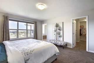 Photo 19: 287 AUBURN GLEN Drive SE in Calgary: Auburn Bay Detached for sale : MLS®# A1032601