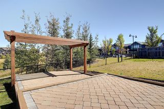 Photo 45: 287 AUBURN GLEN Drive SE in Calgary: Auburn Bay Detached for sale : MLS®# A1032601