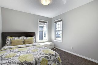 Photo 30: 287 AUBURN GLEN Drive SE in Calgary: Auburn Bay Detached for sale : MLS®# A1032601