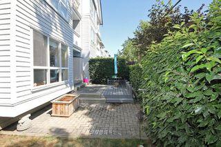 Photo 19: 12633 No. 2 Road in Richmond: Steveston South Condo for sale