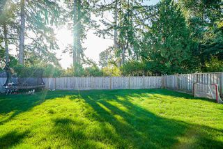 Photo 17: 5183 WINSKILL Drive in Delta: Cliff Drive House for sale (Tsawwassen)  : MLS®# R2407995