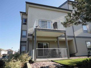 Main Photo: 216 155 Edwards Drive in Edmonton: Zone 53 Condo for sale : MLS®# E4175977