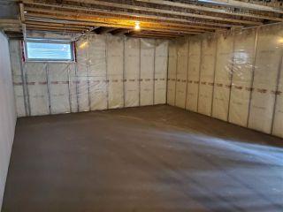 Photo 25: 18124 105 Street in Edmonton: Zone 27 House for sale : MLS®# E4206172