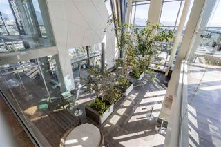 "Photo 24: 2309 1188 PINETREE Way in Coquitlam: North Coquitlam Condo for sale in ""Metroplace M3"" : MLS®# R2492512"