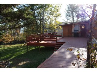 Photo 9: 542 HODGSON Road in Williams Lake: Esler/Dog Creek Manufactured Home for sale (Williams Lake (Zone 27))  : MLS®# N204590