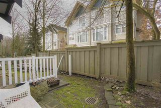 Photo 19: 28 20176 68 AVENUE in Langley: Willoughby Heights Townhouse for sale : MLS®# R2432776