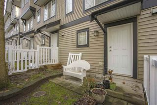 Photo 20: 28 20176 68 AVENUE in Langley: Willoughby Heights Townhouse for sale : MLS®# R2432776