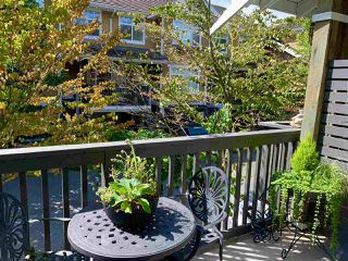 """Photo 14: 126 15236 36 Avenue in Surrey: Morgan Creek Townhouse for sale in """"Sundance by Adera"""" (South Surrey White Rock)  : MLS®# R2482353"""