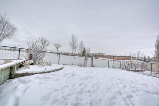 Photo 45: 262 Panamount Close NW in Calgary: Panorama Hills Detached for sale : MLS®# A1050562