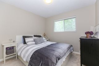 Photo 16: 9124 146 Street in Surrey: Bear Creek Green Timbers House for sale : MLS®# R2401298