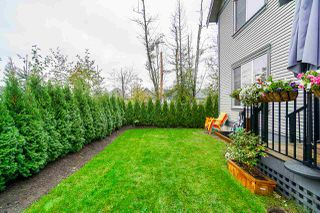 """Photo 19: 70 8217 204B Street in Langley: Willoughby Heights Townhouse for sale in """"EVERLY GREEN"""" : MLS®# R2411503"""