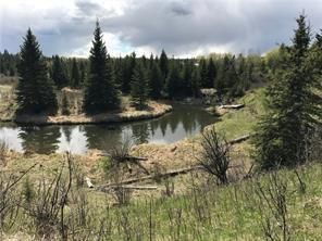 Main Photo: Horse Creek RD in Rural Rocky View County: Rural Rocky View MD Land for sale : MLS®# C4280216