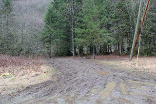 Photo 10: LS 14 COQUIHALLA Highway in Hope: Hope Kawkawa Lake Land for sale : MLS®# R2448087
