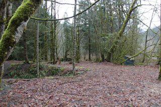 Photo 4: LS 14 COQUIHALLA Highway in Hope: Hope Kawkawa Lake Land for sale : MLS®# R2448087