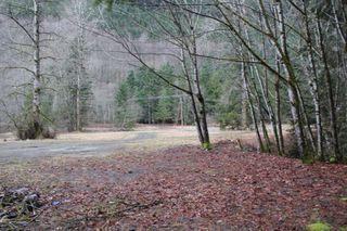 Photo 5: LS 14 COQUIHALLA Highway in Hope: Hope Kawkawa Lake Land for sale : MLS®# R2448087