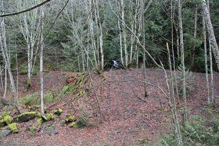 Photo 16: LS 14 COQUIHALLA Highway in Hope: Hope Kawkawa Lake Land for sale : MLS®# R2448087