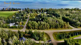 Photo 41: 200 462014 RR 10: Rural Wetaskiwin County House for sale : MLS®# E4213337